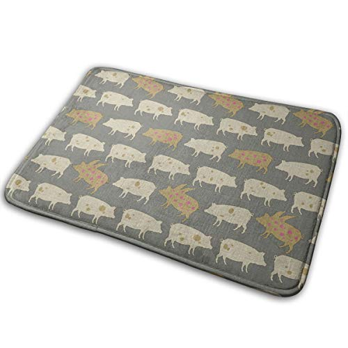 (EWFXZq When Pigs Fly Tweed Doormat Anti-Slip House Garden Gate Carpet Door Mat Floor Pads 15.7