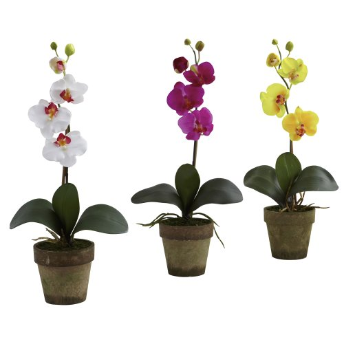 Nearly Natural 4065-AS-S3 Potted Phalaenopsis, Multicolored/White/Lavender/Yellow, Set of 3