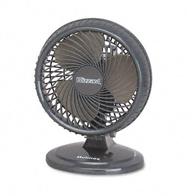 - Holmes 8-Inch Fan | Lil' Blizzard Oscillating Table Fan, Black
