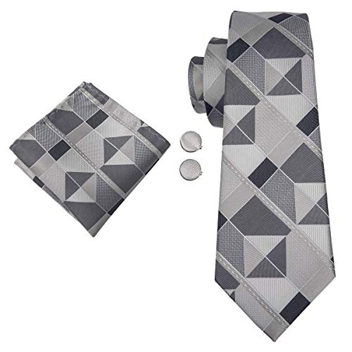 Dubulle Silk Ties for Men Fashion Plaid Tie with Gift Set (New Style (Man Fashion Silk)