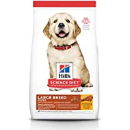 Hill's Science Diet Puppy Large Breed Chicken Meal & Oats Recipe Dry Dog Food, 30 lb bag