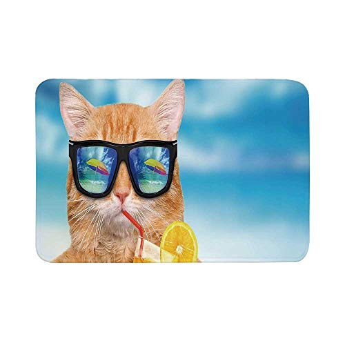 (C COABALLA Funny Durable Door Mat,Cat Wearing Sunglasses Relaxing Cocktail in The Sea Background Summer Kitty Image for Living Room,17.7