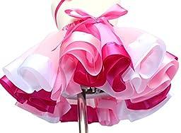 EachWell Little Girls Layered Rainbow Ribbon Tutu Skirt Dress Ballet Tiered Color:#1(M)