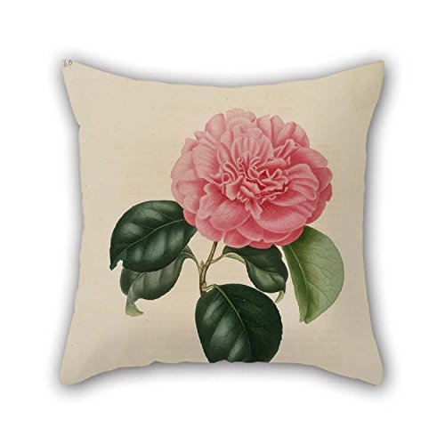 Flower Cushion Covers 20 X 20 Inches / 50 By 50 Cm Gift Or Decor For Son Club Husband Coffee House Son Home Theater - Twin (Frog Crown Rocker)