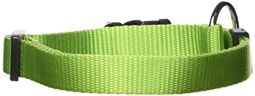 (Dogit Nylon Adjustable Single Ply Dog Collar with Plastic Snap, Large, 3/4-Inch, Green)