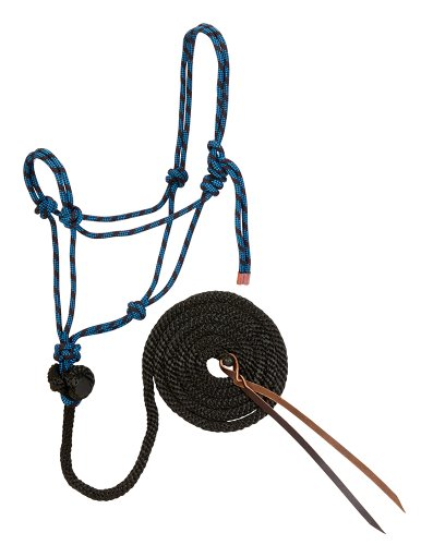 (Weaver Leather Diamond Braid Rope Halter and Lead, Black/Hurricane Blue)