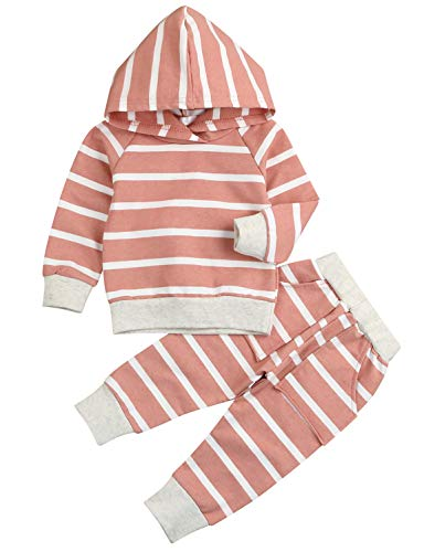 Toddler Baby Girls Outfit Set Striped Hoodie Sweatsuit Tops + Pants Infant Winter Clothes (Pink, 12-18 Months)