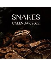 Snakes Calendar 2022: September 2021 - December 2022 Monthly Planner Mini Calendar With Inspirational Quotes