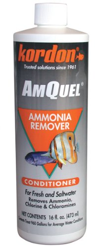 Kordon  #31256 AmQuel- Ammonia Detoxifier for Aquarium, 16-Ounce