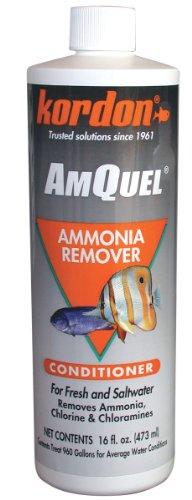 Kordon 31256 AmQuel- Ammonia Detoxifier for Aquarium, 16-Ounce by Kordon