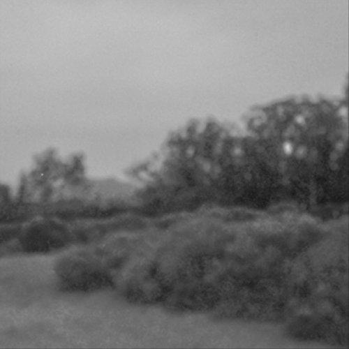 Lilac Drive ()