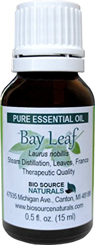 Bay Leaf  Laurus Nobilis  Pure Essential Oil For Aches And Pains 0 5 Fl Oz   15 Ml
