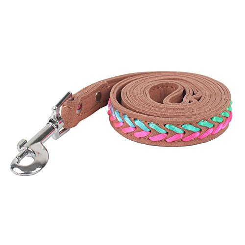 Traumdeutung 120cm Microfiber Leash for Cats Dogs Pet Accessory puppy Medium Brown