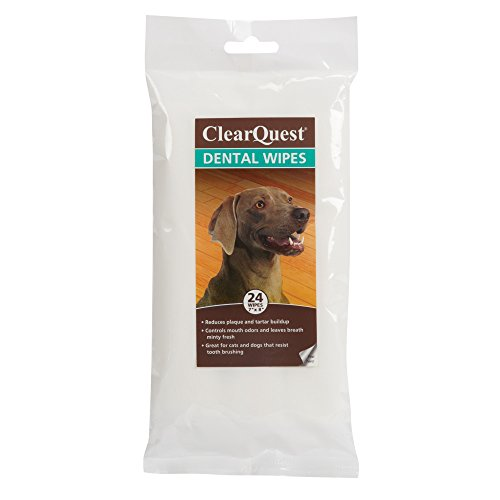 ClearQuest-Pet-Dental-Wipes-24-Pack