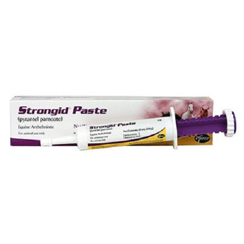 Zoetis 23.6 GMS Strongid Paste Contains 43.9% Pyrantel Pamoate for Use in Horses and Foals by Zoetis