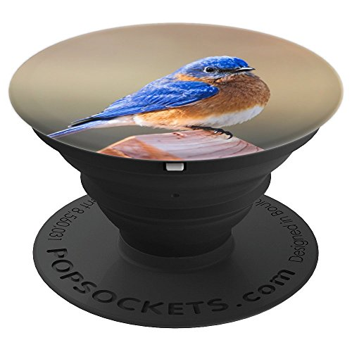 Bluebird Bird Animal Birding Art Photography Gift - PopSockets Grip and Stand for Phones and Tablets
