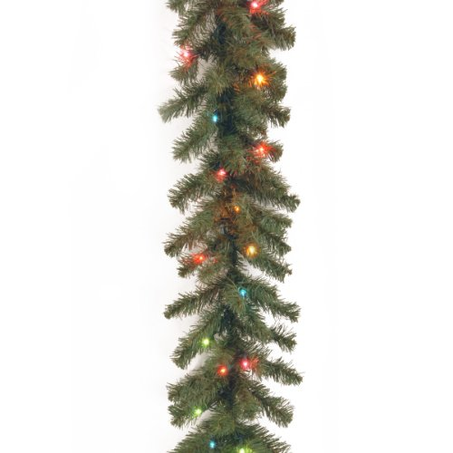National Tree 9 Foot by 10 Inch Kincaid Spruce Garland with 50 Multicolored Lights (KCDR-9BRLO-1) Multi Color Garland