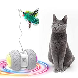 Cat Toys Archives - Bestpetssupplies.com I Buy Best Pet Products ...
