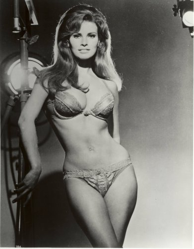Raquel Welch Photo Bra and Panties Pinup Model Art Girl Pinups Photos 8x10