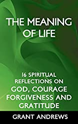The Meaning of Life: 16 Spiritual Reflections on God, Courage, Forgiveness and Gratitude (The Joy of Being Incomplete Book 3) (English Edition)