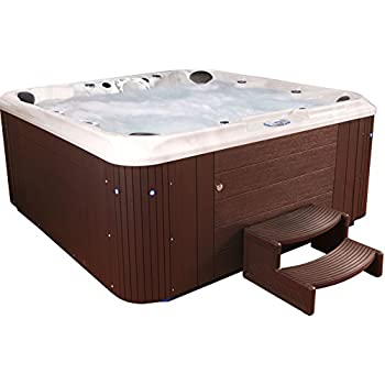 Essential Hot Tubs - Sanctity - 80 Jets, Sterling Silver Shell With Espresso Cabinet Hot Tub