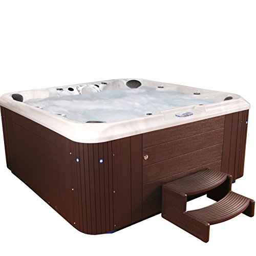 Essential Hot Tubs - Sanctity - 80 Jets, Sterling Silver Shell With Espresso Cabinet Hot Tub by Essential Hot Tubs
