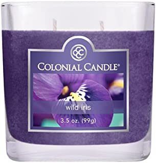 product image for Colonial Candle 3-1/2-Ounce Scented Oval Jar Candle, Wild Iris