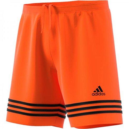 scarpe sportive a3ecf 1021a adidas pantaloncini Entrada 14 arancioni: Amazon.it ...