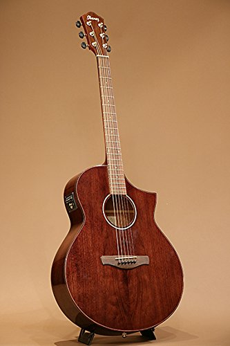 NEW IBANEZ AEW40CD-NT Acoustic Guitar for sale  Delivered anywhere in Canada