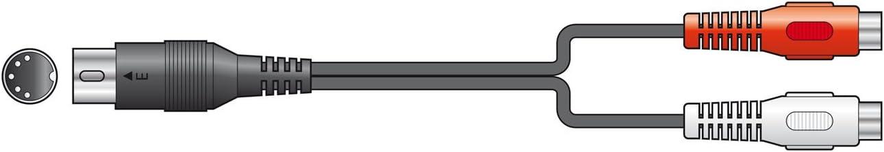 Macho, 2 x RCA, Hembra, 0,2 m, Negro DeLOCK 84491 cable de audio 0,2 m 2 x RCA Negro Cables de audio