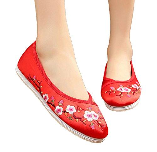 Avacostume Damesschuimbloesem Borduurwerk Satijn Hanfu Schoenen Dansende Kleding Schoenen Rood