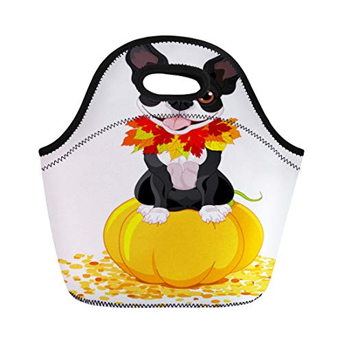 Semtomn Lunch Tote Bag Dog Boston Terrier Sits on Pumpkin Halloween Cartoon Costume Reusable Neoprene Insulated Thermal Outdoor Picnic Lunchbox for Men Women ()