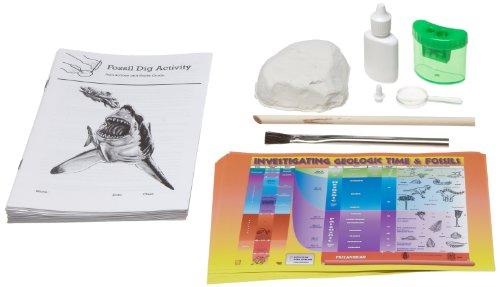 American Educational Fossil Dig Identification (Identification Lab)