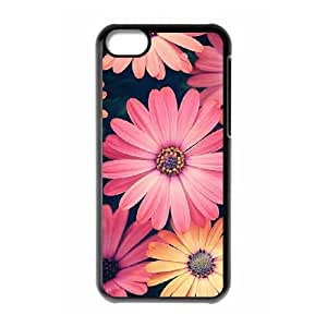Daisy Brand New Cover Case for Iphone 5C,diy case cover ygtg559031