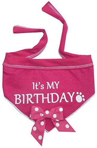 I-See-Spot-Its-My-Birthday-Pet-Bandana-Scarf-in-Hot-Pink