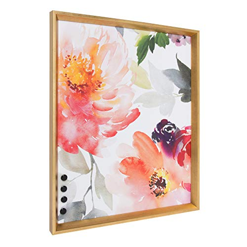 Kate and Laurel Calter Framed Decorative Magnetic Bulletin Board with Floral Watercolor Design, 21.5 x 27.5, Gold ()