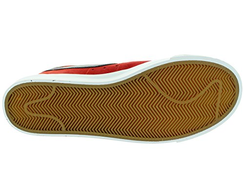 Nike Mens Sb Zoom Dunk Low Pro Scarpe Da Skate Cinabro / Bambù-nero