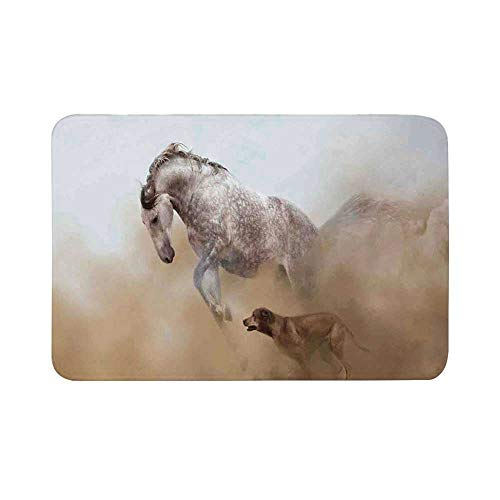 """C COABALLA Horses Durable Door Mat,Lusitanian Horse Playing with Dog in Sand Storm Wild Fast Companion Friendship for Living Room,15.7"""" W x 23.6"""" L"""
