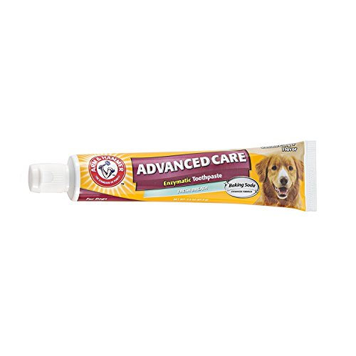 Toothpaste Dog Cet (Arm & Hammer Dog Dental Care Toothpaste for Dogs | No More Doggie Breath | Safe for Puppies)
