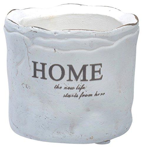 Boston International Mini Home Flower Pot, 2.75-Inch