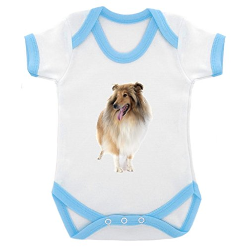 rough-collie-image-baby-bodysuit-white-with-blue-trim