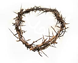 Crown of Thorns From The Holy Land 7\