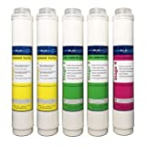 Affordable and Easy Pure Blue H2o 5pc Reverse Osmosis Filter System Replacement Filters (1)