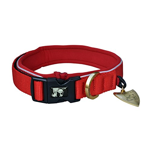 Big Sale Dogness Dog Collar With Patented Buckle  Reflective Adjustable Durable Nylon And Soft Padded For Small Medium Large Dogs  Flame And Pink Heart  Red And Blue  Matching Harness Sold Separately