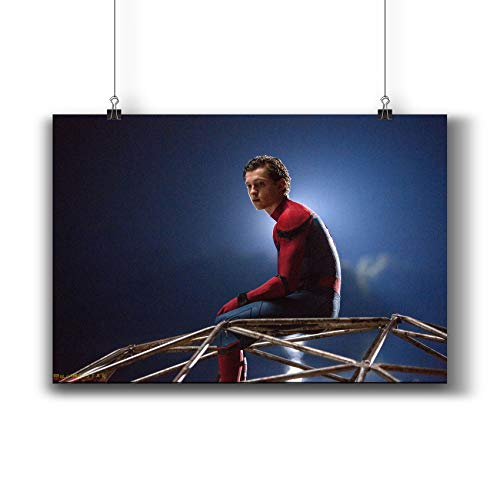 Spider-Man:Homecoming (2017) Movie Poster Small Prints 541-114 Tom