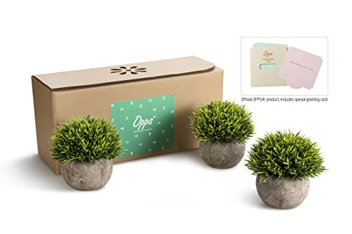 Opps Mini Artificial Plants Plastic Fake Green Grass Topiary Shrubs With Gray Pot For Home D Cor