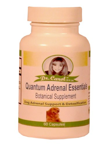 Dr. Carol's Canine Complete Adrenal Essentials for Dogs Review