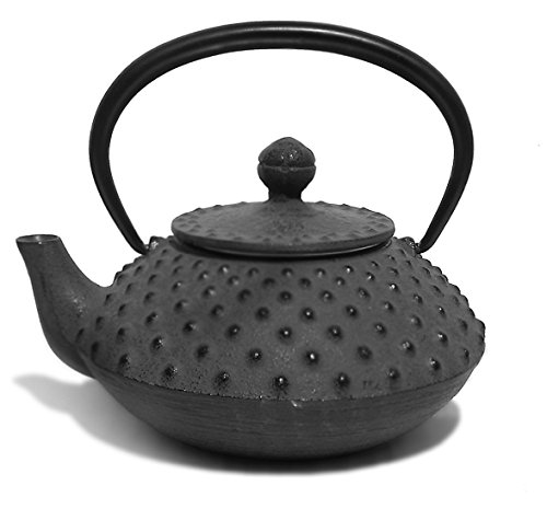 Iwachu Japanese Traditional Arare Design Cast Iron Teapot with Filter 330 ml Black