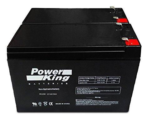 High Performance Upgrade For Your Razor E200/E200S/E300 Batteries For 28% Longer Run Time Beiter DC Power High Performance Battery Pack (Power Pack Upgrade)