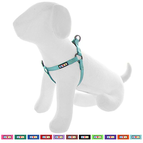Pawtitas Solid Color Step in Dog Harness or Vest Harness Dog Training Walking of Your Puppy Harness Extra Small Dog Harness Teal Dog Harness